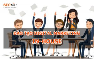 digital-marketing-in-house-da-nang